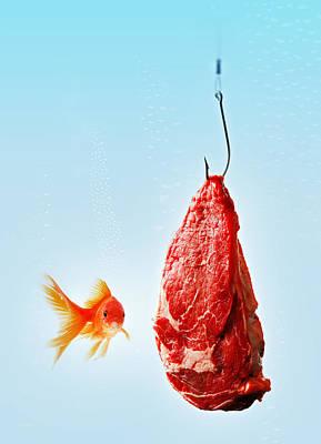 Carnivorous Goldfish Print by Roberto Adrian