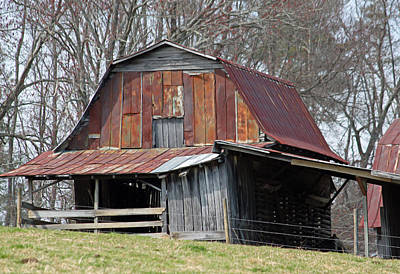 Carolina Barn Original by Suzanne Gaff