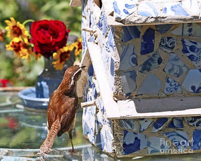 Carolina Wren Digital Art - Carolina Wren And Birdhouse by Luana K Perez