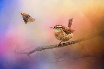 Wren Photograph - Carolina Wrens by Jai Johnson