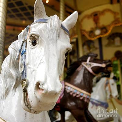 Carousel Horse Print by Bernard Jaubert