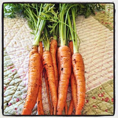Carrot Digital Art - Carrots by Nancy Ingersoll