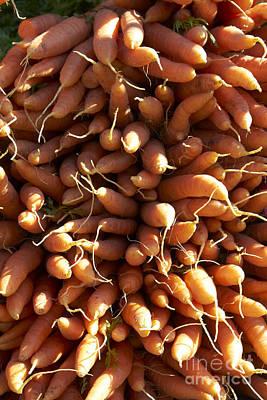 Farm Stand Photograph - Carrots by Tony Cordoza