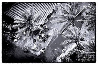 Old Home Place Photograph - Cartagena Palms by John Rizzuto
