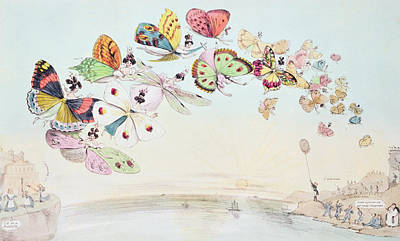 Butterfly Drawing - Cartoon Satirising The Encouragement Of Unmarried Women To Go To Australia by English School