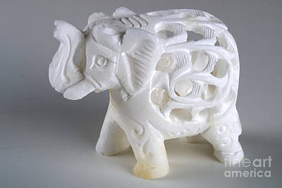 Carved Elephant Print by Alan Look