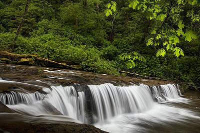Rapids Photograph - Cascades Along A Creek by Andrew Soundarajan