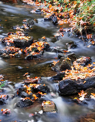 Cascading Autumn Leaves On The Miners River Print by Optical Playground By MP Ray