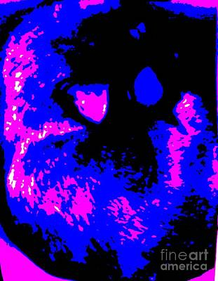 Abstract Photograph - Cat Abstract by Eric  Schiabor