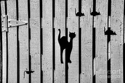 Cat And Mouse Fence Gate Print by Henry Kowalski