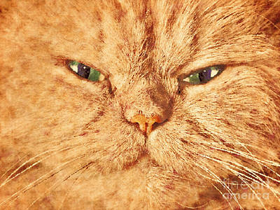 Gray Photograph - Cat Face Close Up Portrait. Painted Effect by Michal Bednarek