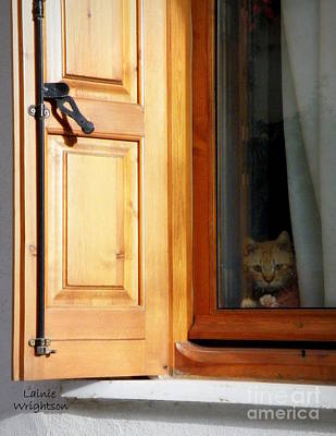 Cat In The Window Print by Lainie Wrightson