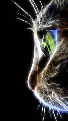 Macro Digital Art - Cat Macro  by Mark Ashkenazi