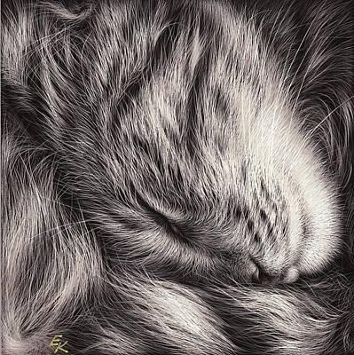 Mixed Media - Cat Nap by Elena Kolotusha