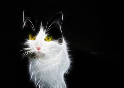 Cat Portrait Fractal Artwork Print by Matthias Hauser