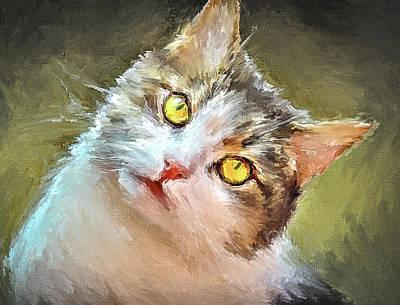 Kitten Digital Art - Cat Yellow Eyes by Yury Malkov