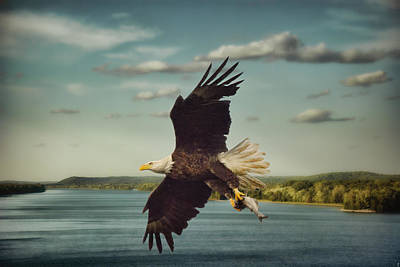 Eagle Photograph - Catch Of The Day by Jai Johnson