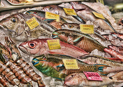 Catch Of The Day Print by Karen Walzer