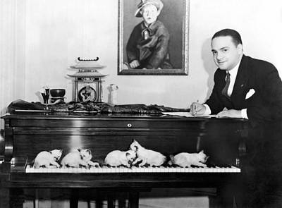 Cats Composing Print by Underwood Archives