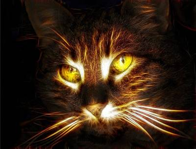Cat's Eyes - Fractal Print by Lilia D