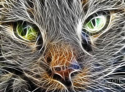Pet Portraits Digital Art - Cats Face Fractal by Antony McAulay