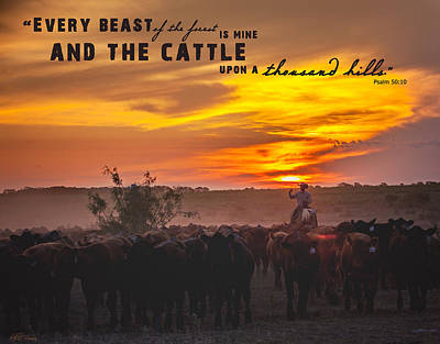 Bible Verse Photograph - Cattle On A Thousand Hills by Kelli Brown