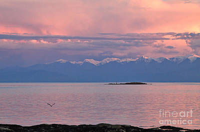 Sunset Photograph - Cattle Point At Sunset On Vancouver Island British Columbia by Louise Heusinkveld