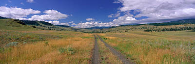 Cattle Ranch Road Near Merritt British Print by Panoramic Images