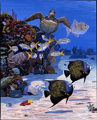 Cayman Reef Re0024 Print by Carey Chen