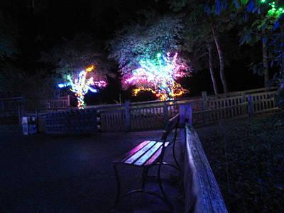 Oh Photograph - Cedar Point - 12125 by DC Photographer