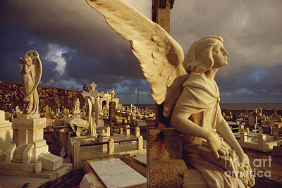 Marble Tomb-stones Photograph - Cemetery In San Juan, Puerto Rico by Farrell Grehan