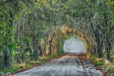 Cemetery Road Print by Charles Shockley