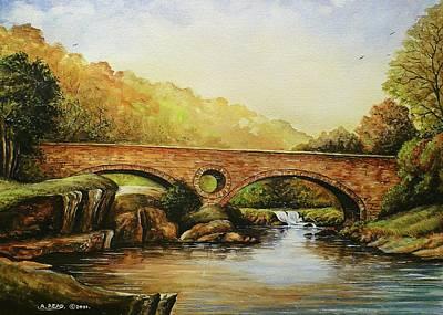 Cenarth Falls Wales Original by Andrew Read