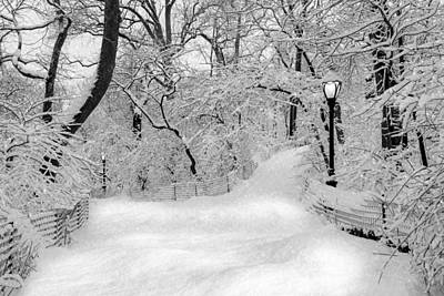 Central Park Dressed Up In White Print by Susan Candelario