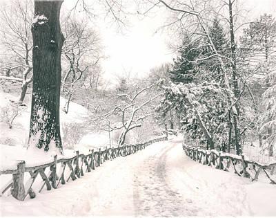 Winter Trees Photograph - Central Park Winter Landscape by Vivienne Gucwa