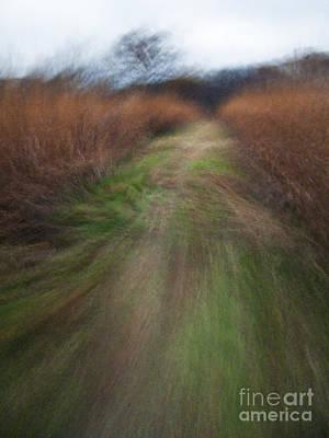The Narrow Path - Cg10-000004 Print by Daniel Dempster