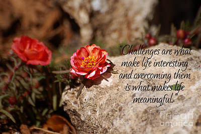Challenges Print by Diane E Berry