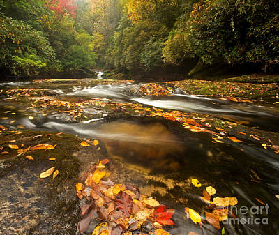 Waterfall Photograph - Changing Chattooga by Matt Tilghman
