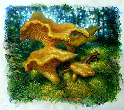 Newts Painting - Chanterelles And Rough-skinned Newt by D Brent Burkett