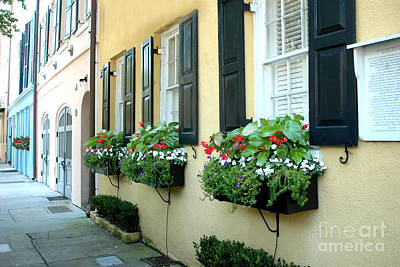 Charleston South Carolina - Rainbow Row Yellow Black Shutters Flower Window Boxes - French Quarter  Print by Kathy Fornal