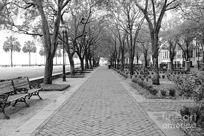 Benches Photograph - Charleston Waterfront Park Walkway - Black And White by Carol Groenen