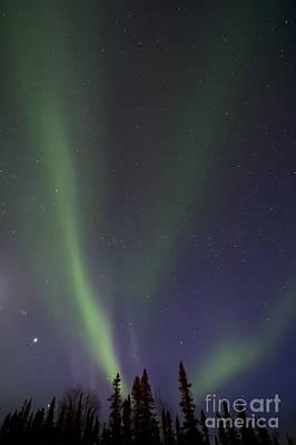 Vertical Format Photograph - Chasing Lights by Priska Wettstein