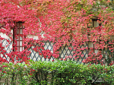 Autumn Photograph - Chateau Chenonceau Vines On Wall Image One by Randi Kuhne