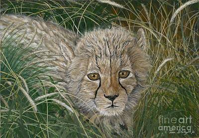 Cheetah Painting - Cheetah Cub by Tom Blodgett Jr