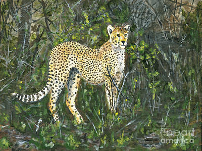 Laundry Painting - Cheetah Painting by Timothy Hacker