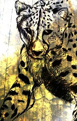 Cheetah Drawing - Cheetah-the Jungle Bullet by Shokeen Kalyan