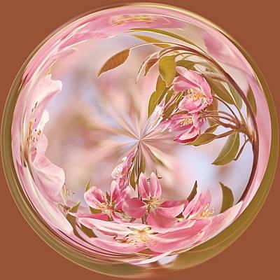 Cherry Blossom Orb Print by Kim Hojnacki