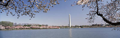 Cherry Blossoms Photograph - Cherry Blossom With Monument by Panoramic Images