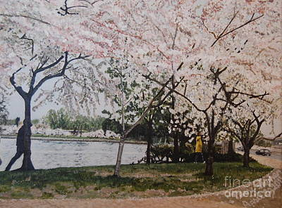 Tidal Basin Painting - Cherry Blossoms by Terry Stephen