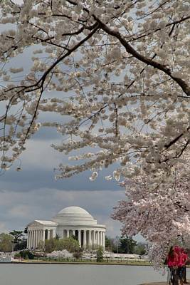 Outside Photograph - Cherry Blossoms With Jefferson Memorial - Washington Dc - 011314 by DC Photographer